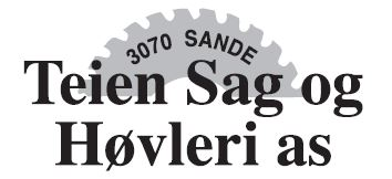 Teien Sag